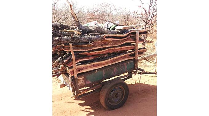 B/Bridge community raises alarm over deforestation