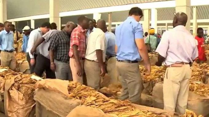 Tobacco growers earn US$319m