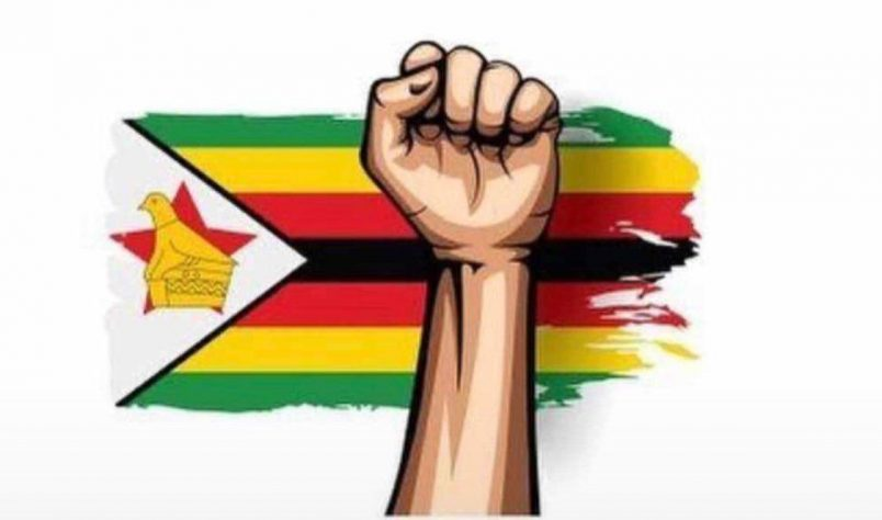 Social media campaign targets Zimbabwe crackdown on anticorruption activists