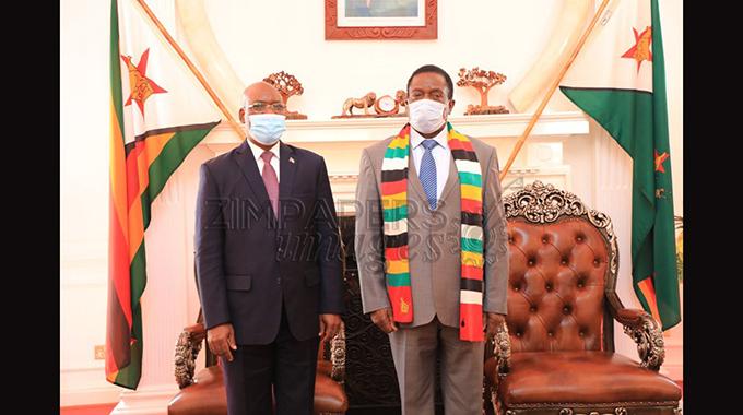 Equatorial Guinea delegation meets President