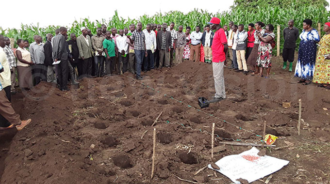 Farmers warned against planting too early