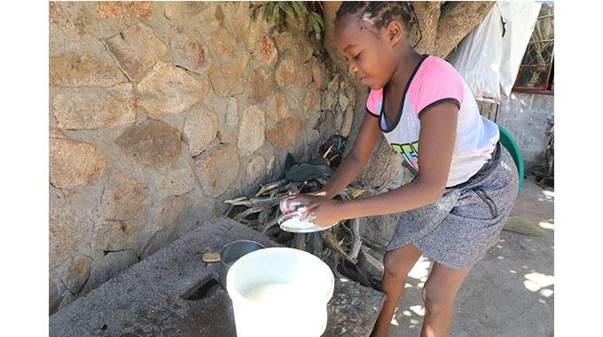 Diasporan raises US$16k for Luveve