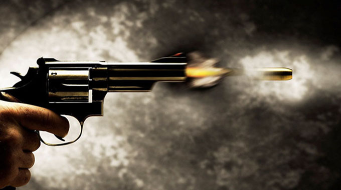 Zanu PF youth shot dead, nine injured