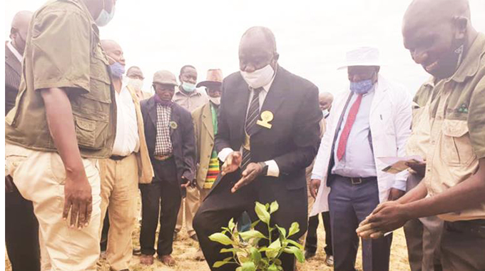 First Lady laments deforestation