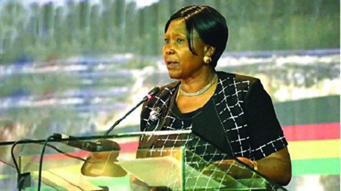ZDF members' welfare a top priority: Minister