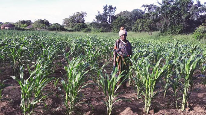 Crop situation good countrywide