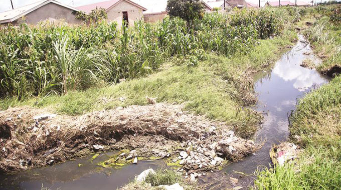 Residents recount wetlands tragedy