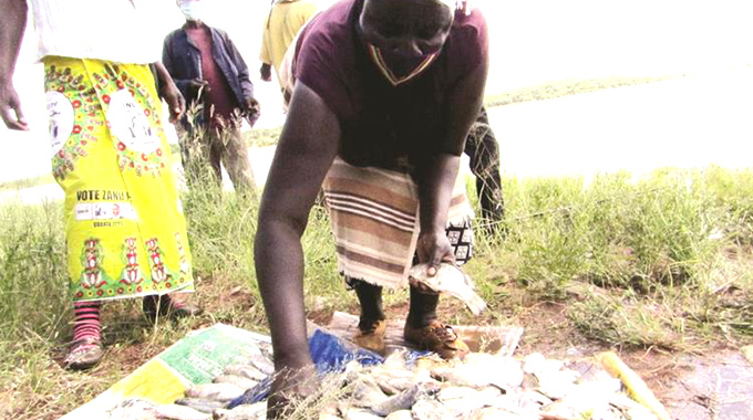 Fish proceeds bring joy to pupils