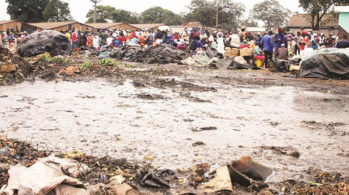 JUST IN: EMA gives Harare 10 days to clear dumpsites