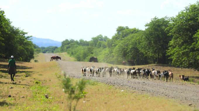 Chilonga villagers dismiss naysayers