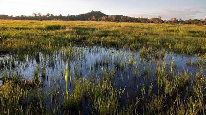 Wetlands project benefits Bindura community