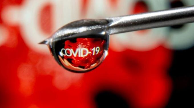 Covid-19 hits Padenga's crocodile business