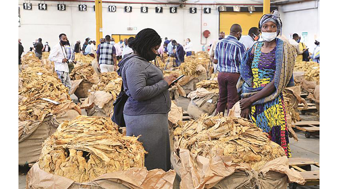 Tobacco production target raised to 300 million kg