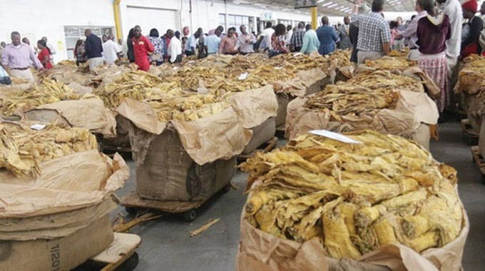 Let tobacco marketing season roll. . . more to gain from improving exports quantity, quality