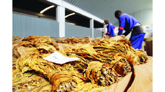 Tobacco prices firm, farmers earn US$90m