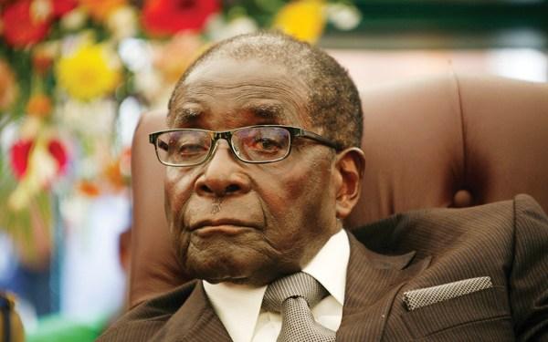 Mugabes' diamond, ivory deals exposed