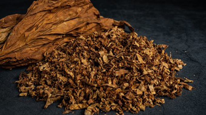 Tobacco prices continue to firm