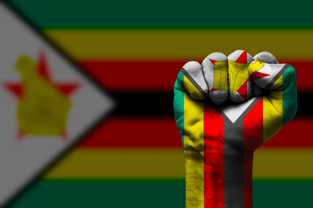 Zimbabwe's Unions Declare an End to 'Business as Usual'