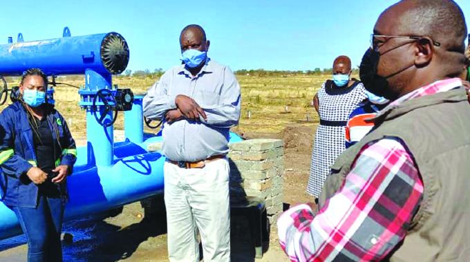 Firm ploughs US$5,5m into citrus production