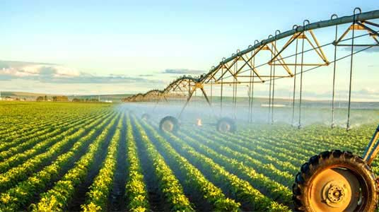 200 000ha available for winter irrigation