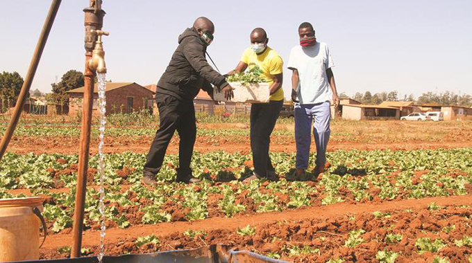 Youth League comes to aid of horticultural projects