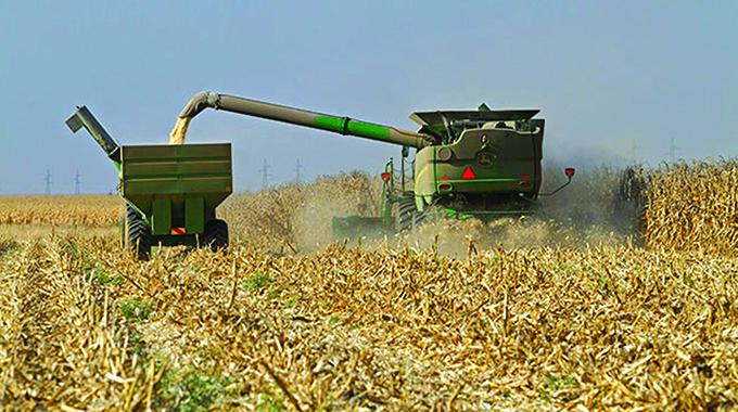 AMA reissues $5bn agro-bills to buy grain