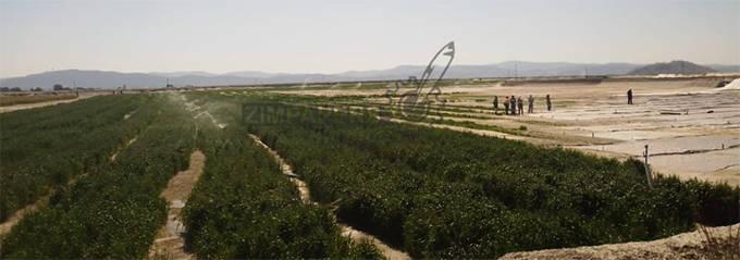 Shamva Mine puts an end to dust pollution