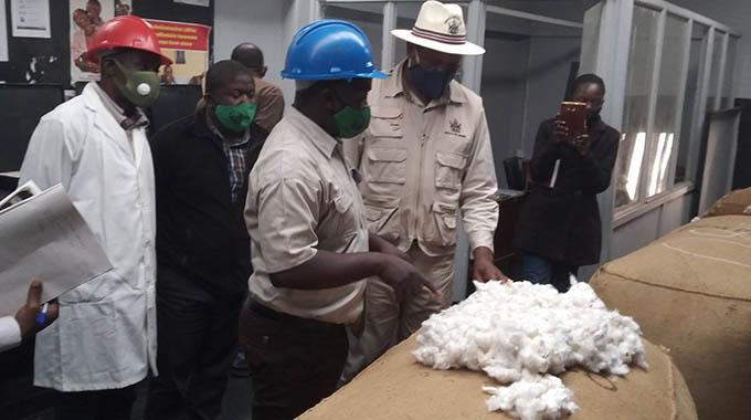 Pfumvudza extended to cotton farming