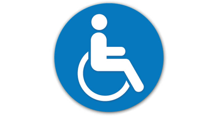 Disability data collection during 2022 census