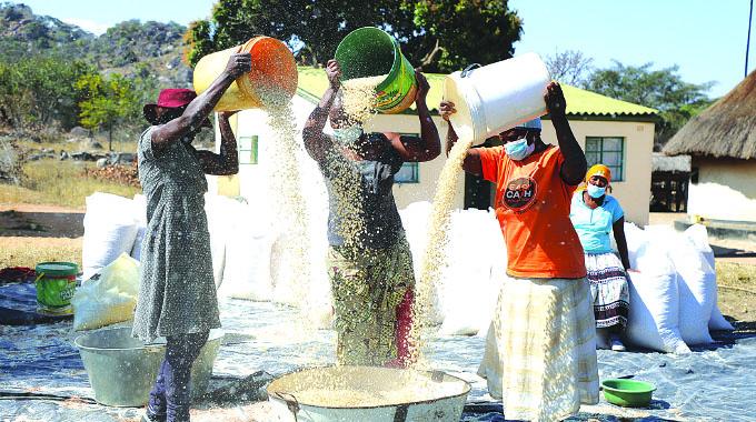 Pfumvudza targets 2,3m households