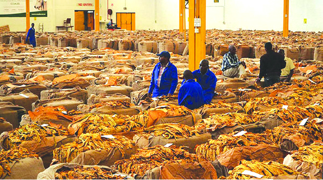 US$60m kitty for tobacco farmers