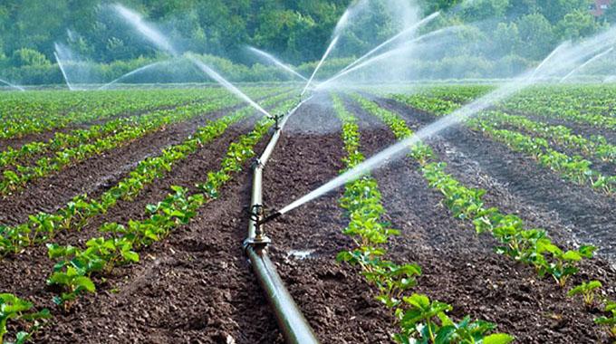 Digital platforms change face of agric sector