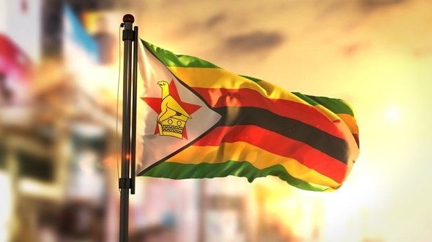 Zimbabwe's central bank in 2020 abandoned a currency peg and set up a weekly auction to ease a severe US dollar crunch. (iStock)