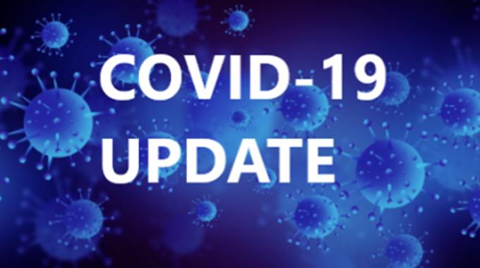 Upwards blip in Covid deaths