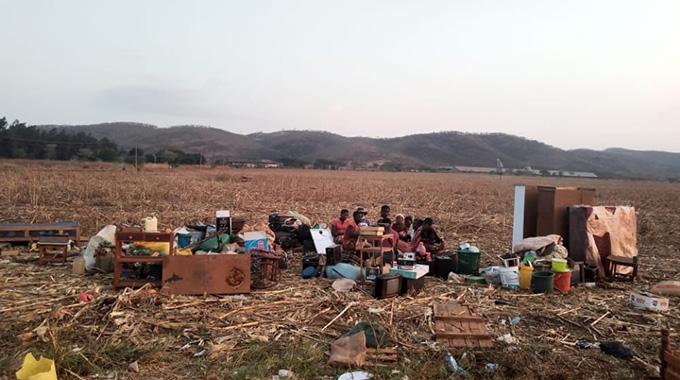Families still in the open at Mafiosi's farm