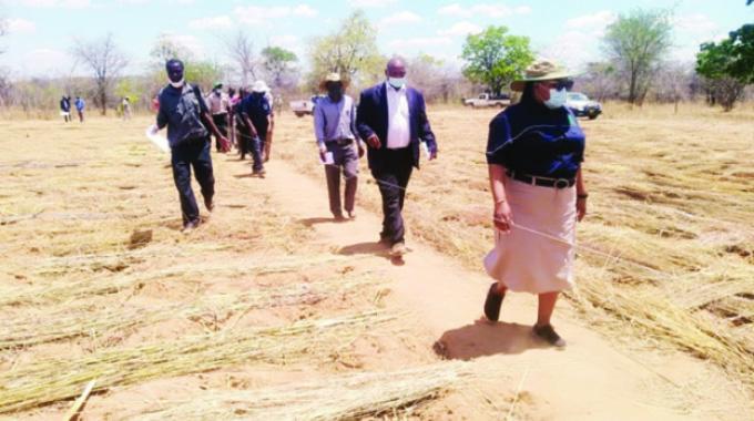 Pfumvudza launched amid high hopes
